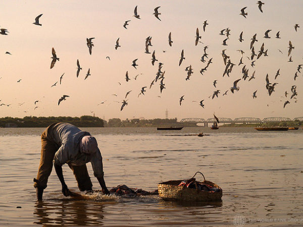 Fisherman | The World Bank Group
