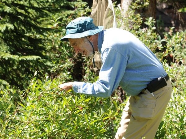 Paul R. Ehrlich observing butterflies