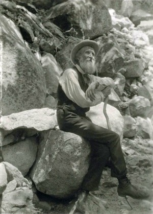 Image of John Muir by Francis M. Fritz via Wikimedia Commons (Public domain)