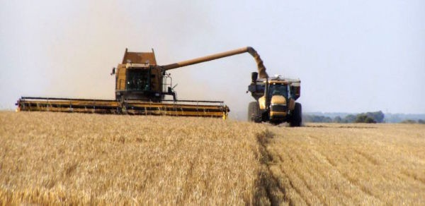 Harvest Time by Cryon via Flickr (https://www.flickr.com/photos/cyron/1139504) | CC BY