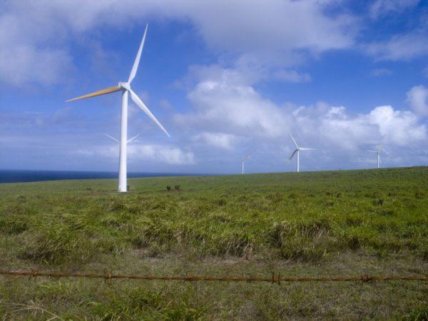 A wind farm near Upulu Airport, Big Island, Hawaii | Family Herrera via Flickr