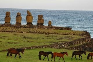 On Rapa Nui (Easter Island), Chile © M.C. Tobias