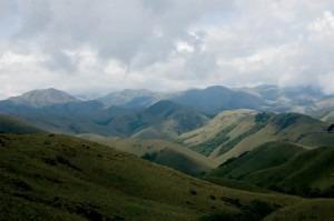 The Nilgiris Biosphere Reserve © M. C. Tobias