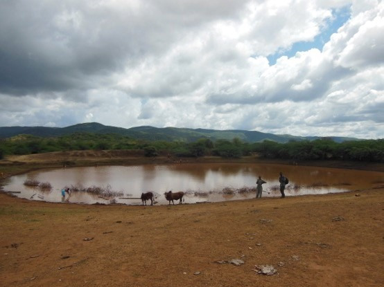 Water is an important resource for the agro-pastoralists in Marsabit County, Kenya. Communities manage their own water ponds, dredging them every year during the dry season to help reduce the impact of drought. Photo by Aaron Clark-Ginsberg