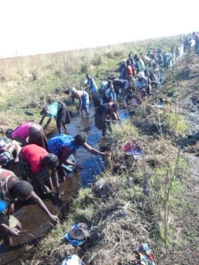 ZambeziRiverZambia