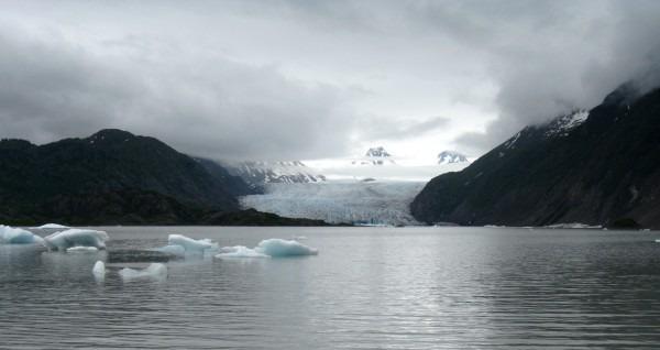 Grewingk Glacier, Alaska by Erika Gavenus