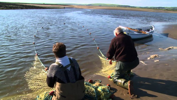 Salmon netting on the Taw & Torridge | North Devon Moving Image | CC BY