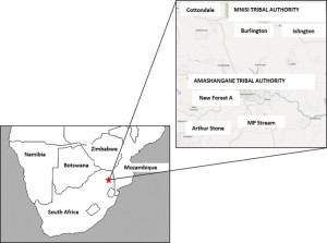 A map of the six study villages in the Bushbuckridge region, South Africa.