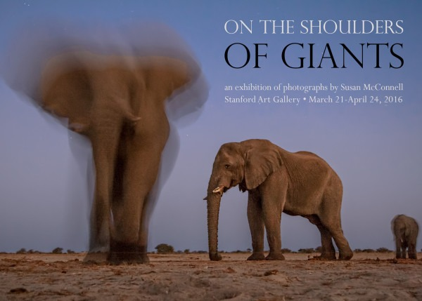 On the Shoulders of Giants, an exhibition of photographs by Susan McConnell