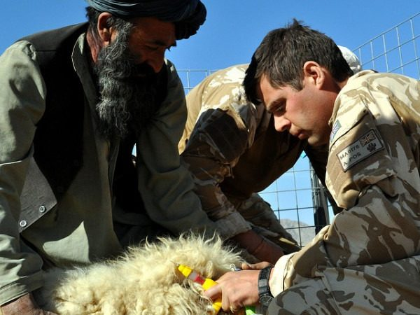 Herriot in Helmand - Pioneering Vet clinic in Taliban country 2009 | Flickr | CC BY-NC-ND 2.0
