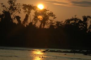 The Tambopata River, Southeastern Peru © M. C. Tobias