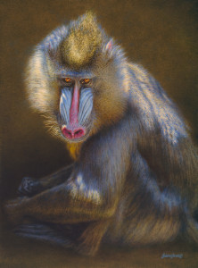 Brian Jarvi Windows to the Soul, Original Oil, 20x27 inches, © Brian Jarvi, Original study for An African Menagerie