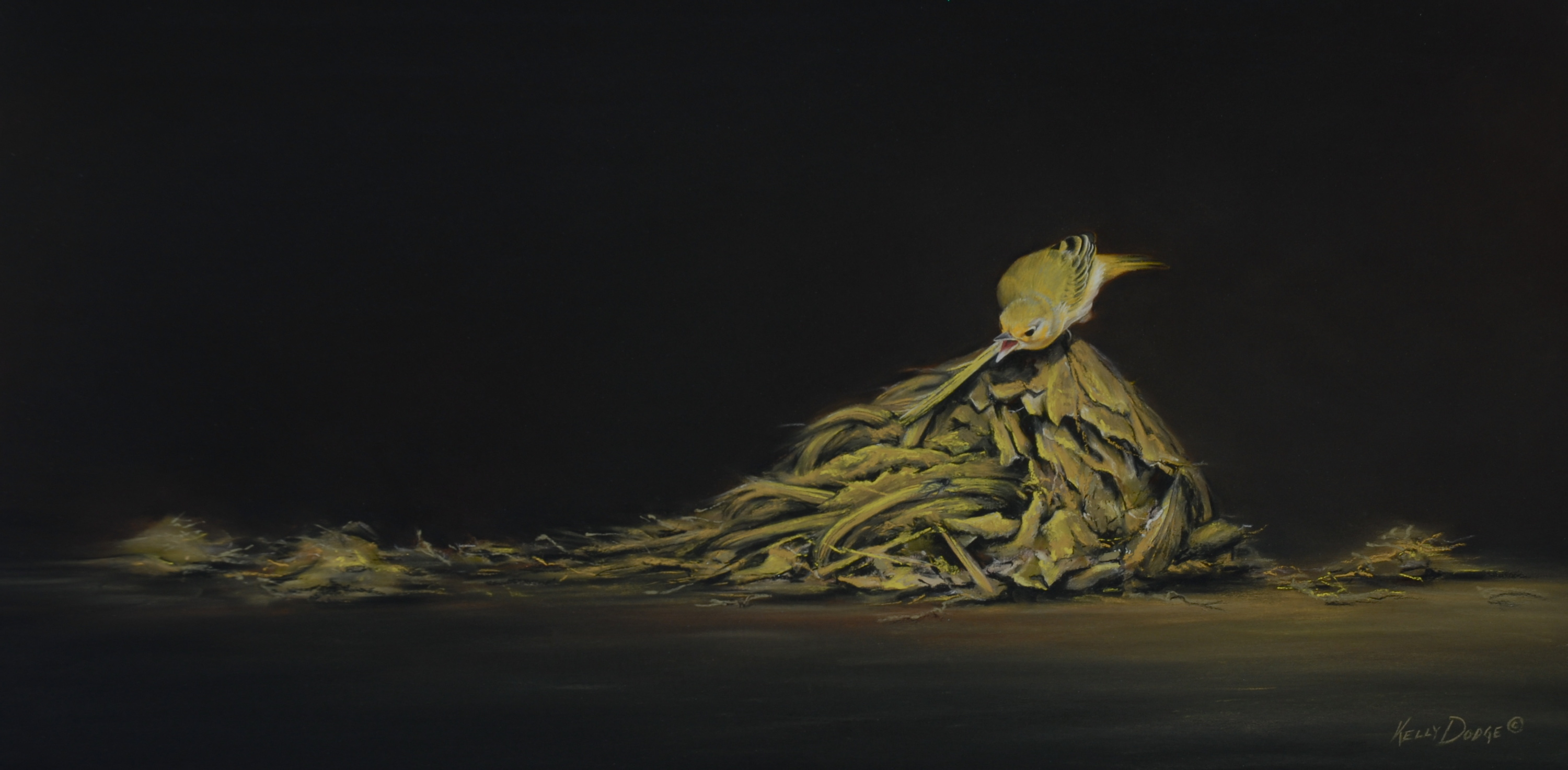 <strong>Kelly Dodge </strong><em>Particularly Poignant</em>, Yellow Warbler and Galapagos Giant Tortoise Pooh, 12x23 inches, Pastel on Museum Paper © Kelly Dodge