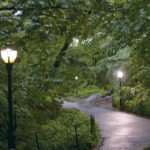 Central Park, 5:30 am, Manhattan, New York, © M.C.Tobias