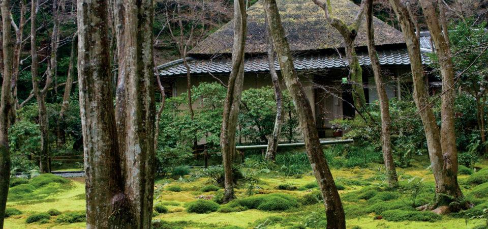 Moss Garden in Kyoto, Japan © J.G.Morrison