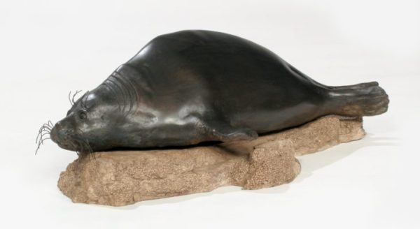 Terry Woodall The Sentinel (2009) Baikal Seal, Bronze, 7x19x12 inches, © Terry Woodall