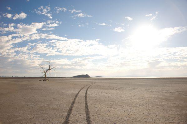 Salton Sea Wasteland by Oliver.Dodd | Flickr | CC BY 2.0