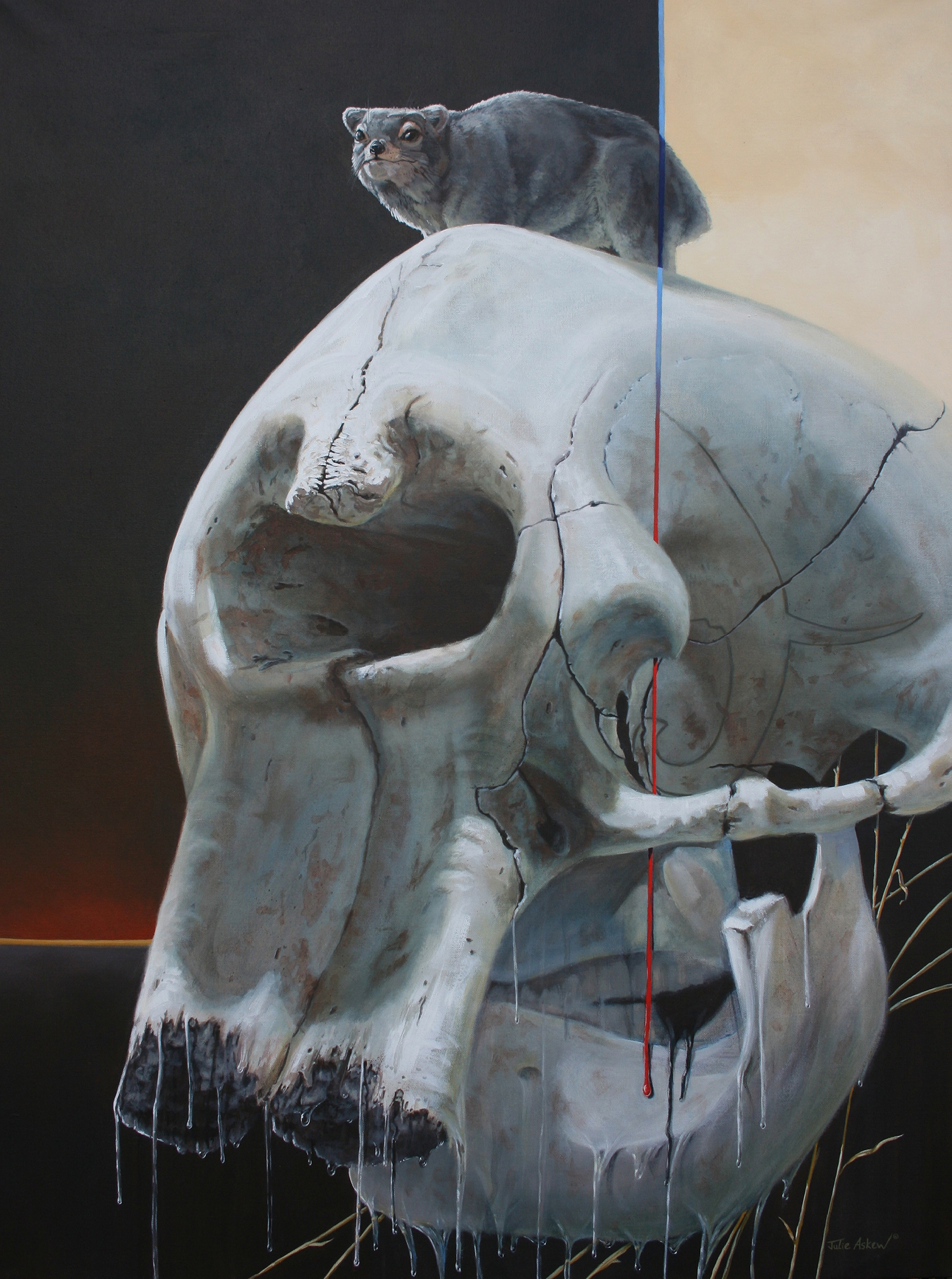 julie-askew-lifeline-3-the-last-elephant
