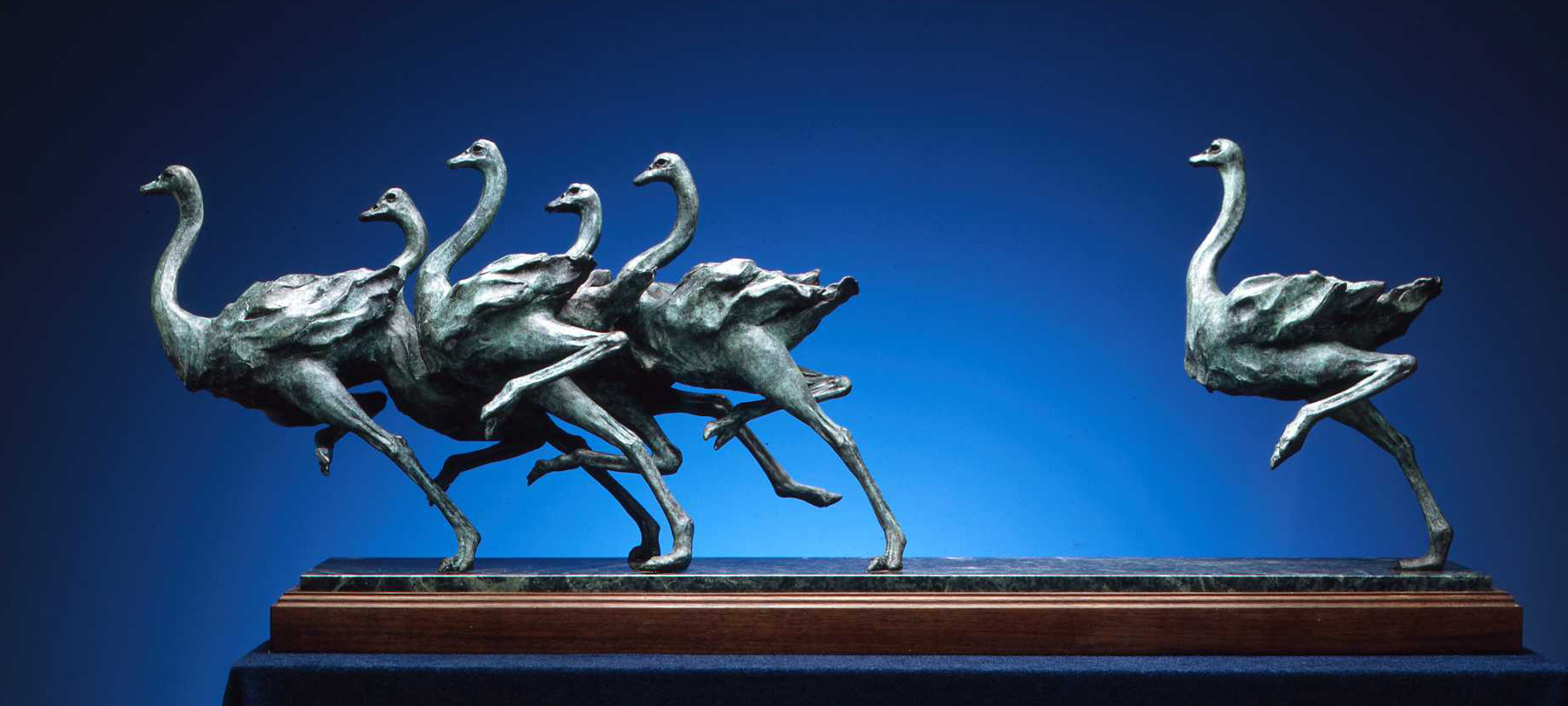 Sherry Salari Sander Herd of Birds, 1993, Bronze sculpture of ostrich 14x38x8 inches, Displayed in permanent collection of the Leigh Yawkey Woodson Art Museum. © Sherry Salari Sander