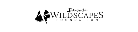 wildscapes-foundation-smaller-white-background