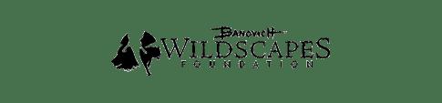 wildscapes-foundation-smaller-white-background