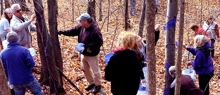 Volunteers painting one of several 1/3 mile Blued Trees measures, in Rensselaer County, New York. Photo by Jack Baran.
