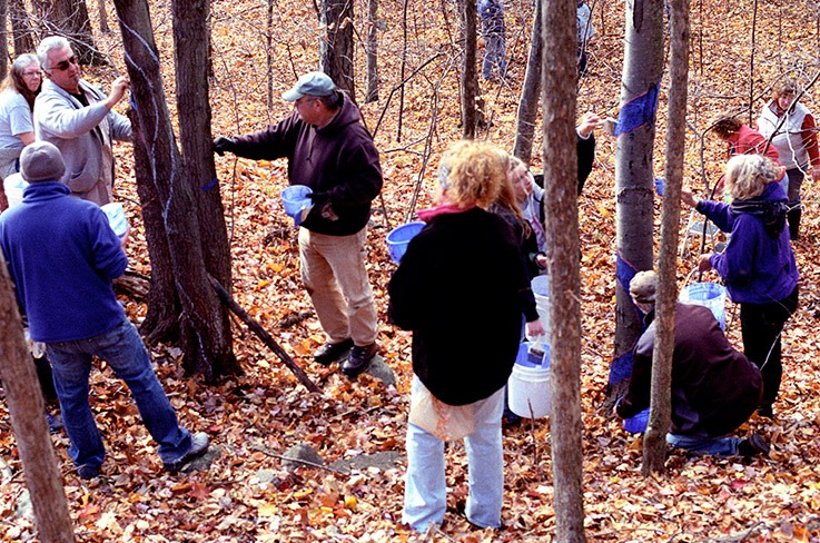 Volunteers painting one of several 1/3 mile Blued Trees measures, in Rensselaer County, New York. Photo by Jack Baran.