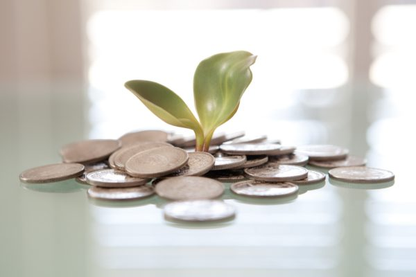 Money Plant by Tax Credits | Flickr | CC BY 2.0