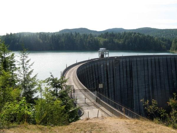Alder Dam by Basia Irland