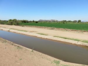 Irrigation ditch with corporate water coming from the Obregón Dam to grow wheat for export. By Basia Irland