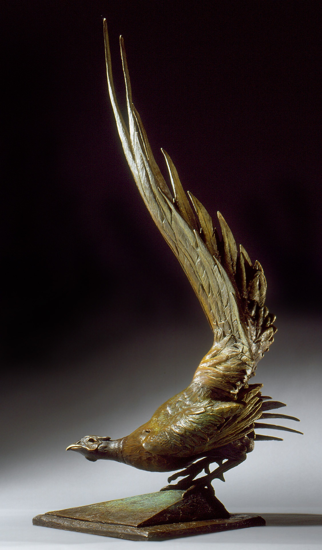 Ken Newman Tale of Respect–Pheasant, Bronze, 49th Society of Animal Artist's Art and the Animal Exhibition—Rolling Hills Wildlife Adventure, Salina KS, Wildlife Experience, Parker CO, Arizona Sonora Desert Museum, Tucson AZ, and Green Acres Art Center, OH © Ken Newman