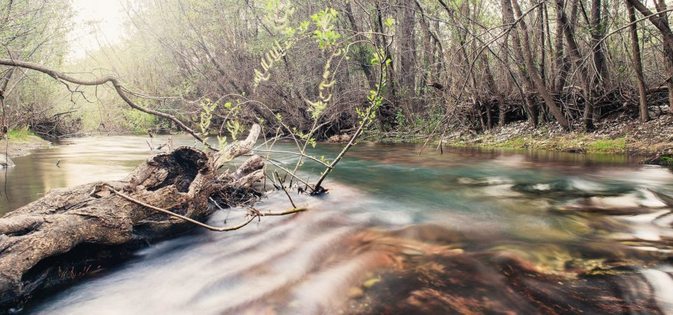 River and Stuff by Ricardo Velasquez | Flickr  | CC BY-ND 2.0