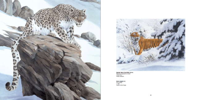 Arthur Singer (Left) Siberian Tiger In the Winter, Watercolor & gouache on board, c. late 1970s, Private Collection (Right) Snow Leopard, Oil on canvas, c.1984, Estate of Arthur Singer
