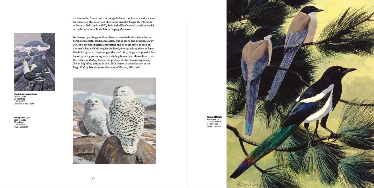 Arthur Singer, Birds of Europe c. 1967-1968 (Upper-Left) Great Black-backed Gulls, Oil on canvas, Collection of Paul Singer; (Bottom-Left) Snowy Owls, Oil on board, Private Collection; (Right) Jays and Magpie, Gouache on board, Private Collection
