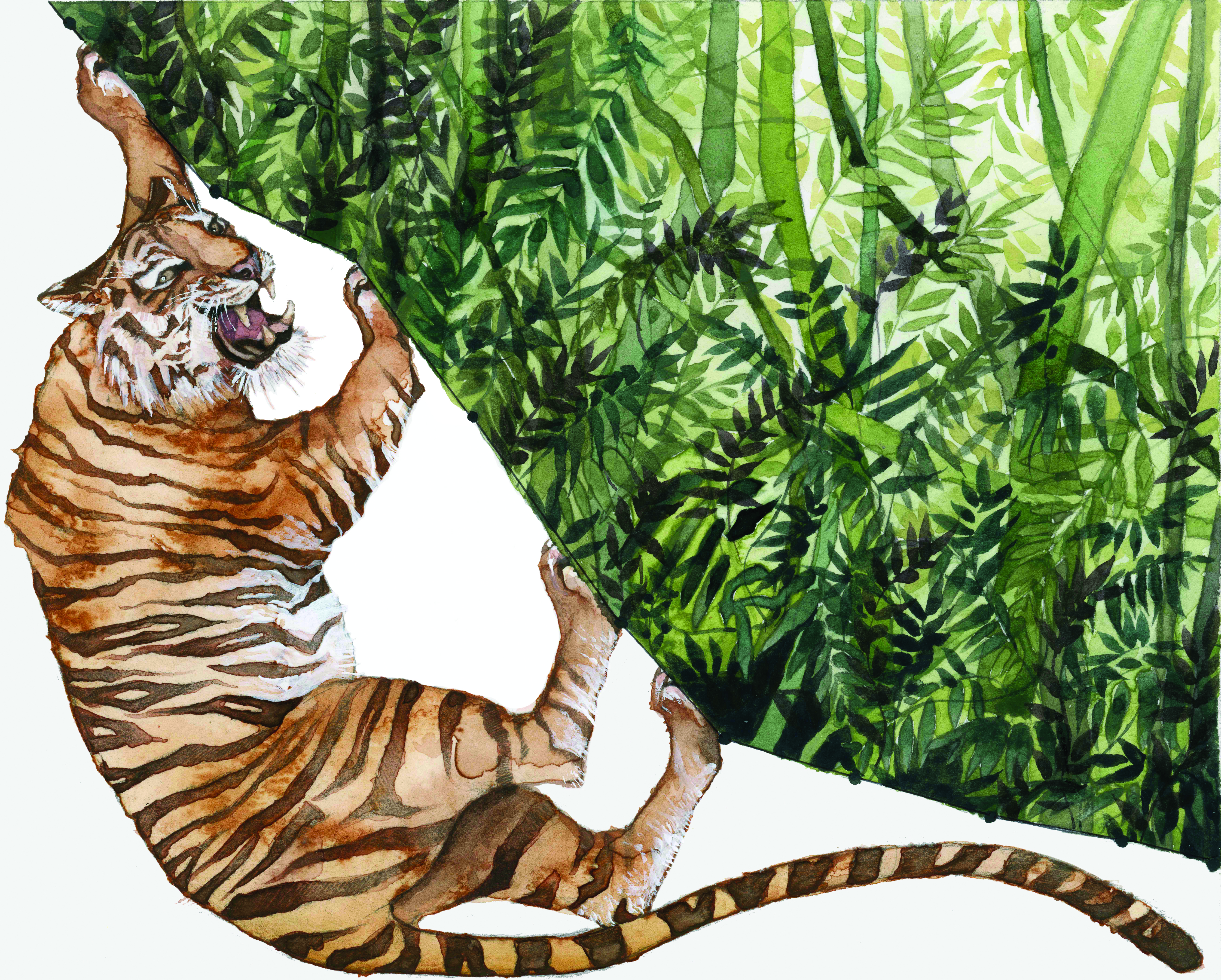 Jill Pelto | Habitat Degradation: Deforestation. This piece uses data showing the decline in rainforest area from 1970 to 2010. [3] These lush ecosystems are disappearing before our eyes, and with them, millions of beautiful species. Jill is quite certain that anyone would agree that a tiger is a magnificent creature, yet how many people realize that they are critically endangered? For this series Jill chose to separate the animals from their habitat, because that is ultimately what we are doing. The tiger is trapped outside the forest, cornered. He is defensive and angry that we are sealing his fate.
