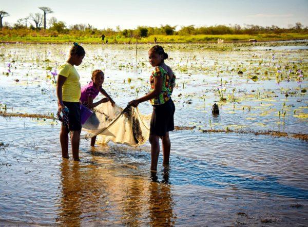Girls net fishing, Madagascar by Rod Waddington | Flickr | CC BY-SA 2.0