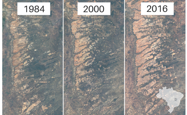 Figure 1. The following is a series of ariel photos by the New York Times for the area delineated in a little square in the map of Brazil on the right most picture.
