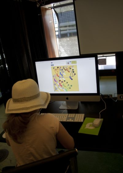 Designing an evolutionary tree board at the DIY Go Extinct! launch.