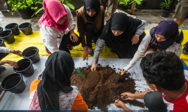 Urban Farming workshop in Jakarta as part of Make SMTHNG week © Afriadi Hikmal / Greenpeace