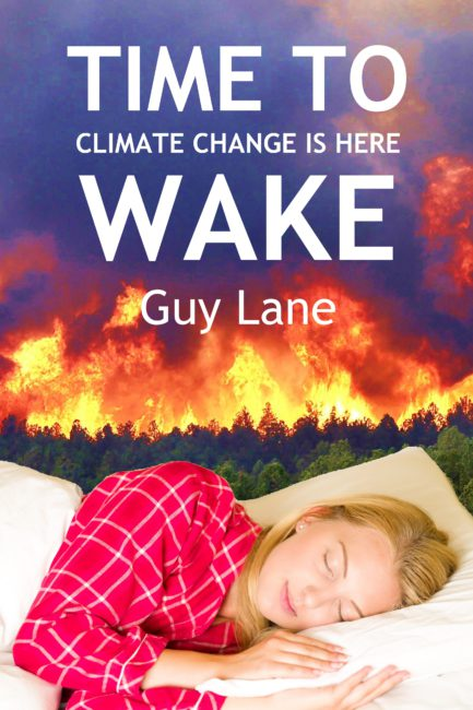 Time to Wake ebook