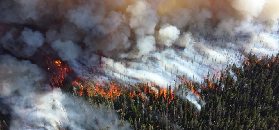 Wildfires | Flickr
