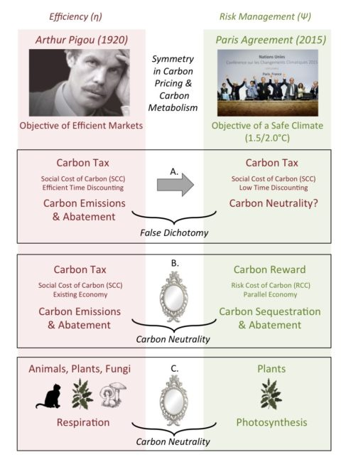Figure S2-5. The Silver Gun Hypothesis is the interpretation that the objectives of (top left) market efficiency, and (top right) climate safety, have resulted in a false dichotomy in carbon pricing (A). A resolution to the climate crisis is to address climate safety with a Global Carbon Reward (B). This approach aims to normalize the problem of climate change by equating human economies with natural multi-agent systems, such as animals, plants and fungi (C).