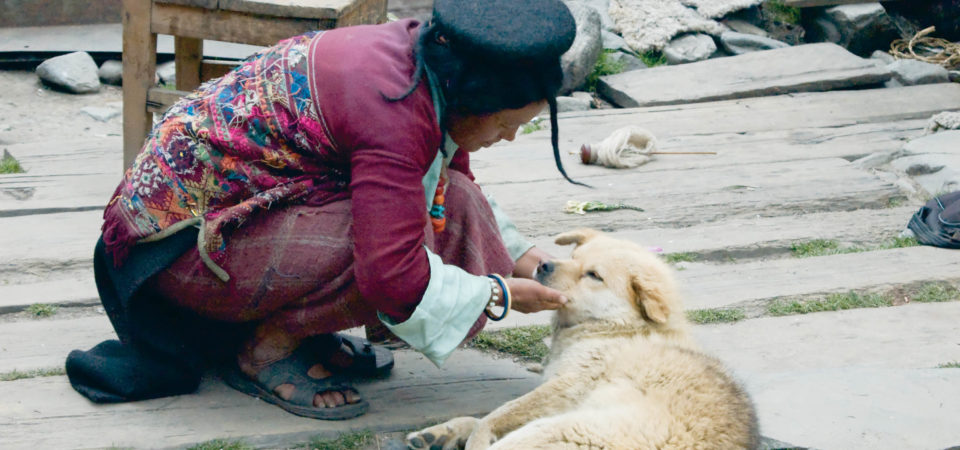 A Brokpa Woman and Her Dog, Eastern Bhutan, Photo (C) M.C.Tobias