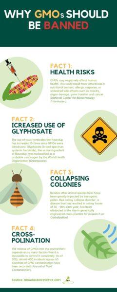 disadvantages of GMO foods_jpeg (1)