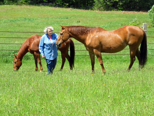Santora with her horses