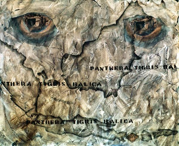 Last Killed (The last Bali Tiger, killed on September 27, 1937) 2003