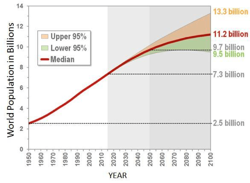 Figure 2 :UN forecast depending on what growth rate we can expect [ 3 ]