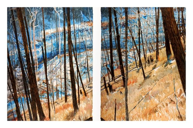 "Pick-up Sticks (Barrièrre Fire near Kamloops, B.C.) watercolor on paper with pyrography, 30"" x 44"" diptych (2012)"