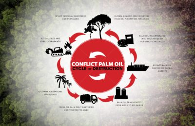 The Conflict Palm Oil cycle of destruction (Credit: Rainforest Action Network)