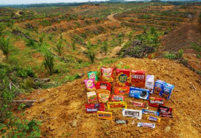 Common snacks containing palm oil associated with habitat destruction